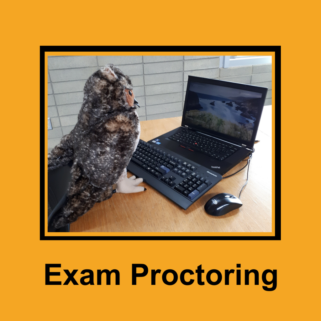 Link to the Exam Proctoring Page